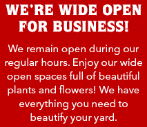 We're Wide Open for Business!